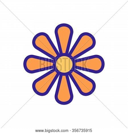 The Inflorescence Of Chrysanthemum Icon Vector. The Inflorescence Of Chrysanthemum Sign. Color Isola