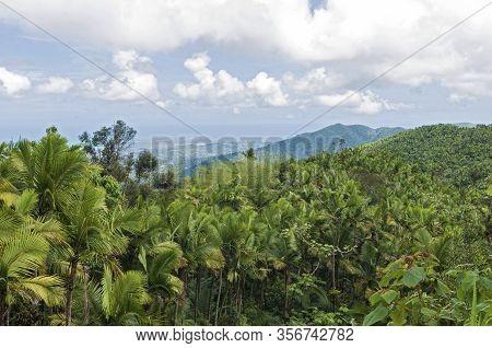Atop Peaks Of El Yunque Overlooking Rainforest With Atlantic Ocean In Distance