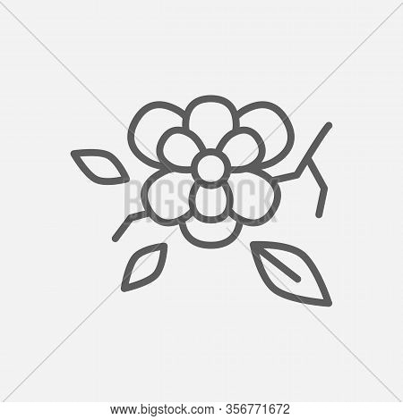 Magnolia Icon Line Symbol. Isolated Vector Illustration Of Icon Sign Concept For Your Web Site Mobil