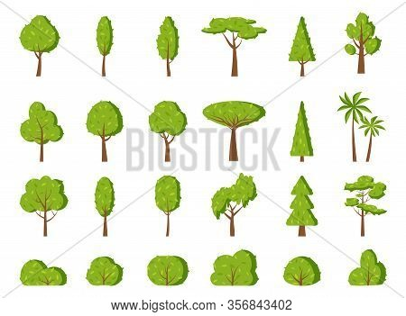 Summer tree and bush, flat cartoon icon set. Different shape simple spring forest park, oak, garden, fir, palm, symbol. Season green leaf, eco organic plant sign. Isolated on white vector illustration