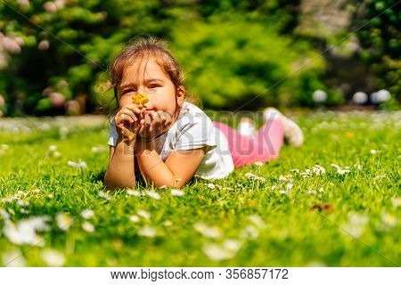 Young Caucasian White Girl Smelling Yellow Buttercup Flower On Meadow, Lying On Field With Many Yell