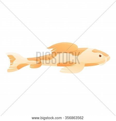 Japan Koi Fish Icon. Cartoon Of Japan Koi Fish Vector Icon For Web Design Isolated On White Backgrou