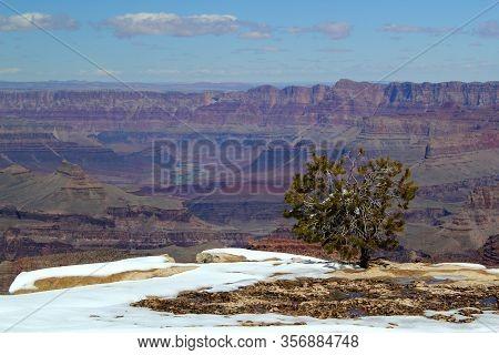 Beautiful View: Grand Canyon Nationalpark / Rim Trail / South Rim / Arizona / Usa