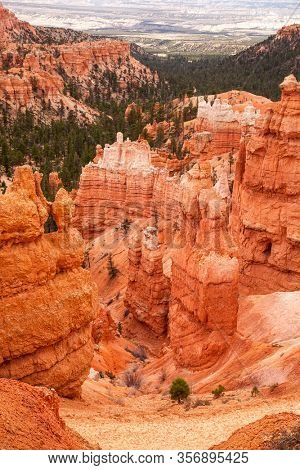 The Hoodoo rock  spires and evergreen trees of Bryce Canyon, Utah, USA.