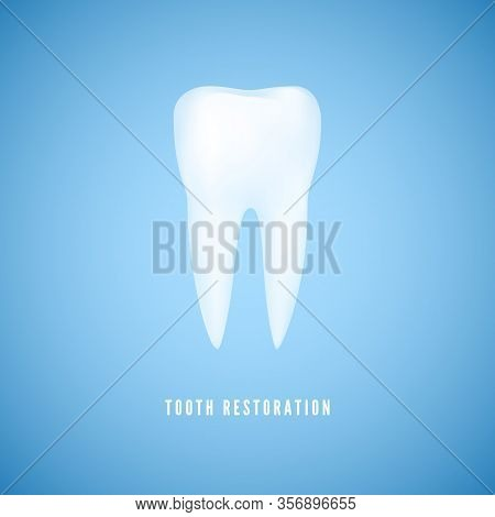 White Realistic Tooth Illustration. Clear Health Molar. Dentist Care And Tooth Restoration Medicine