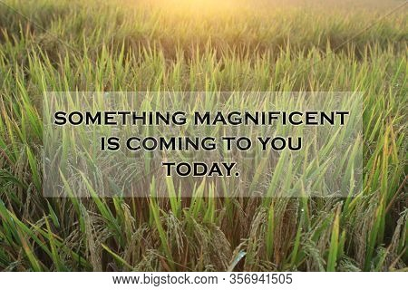 Inspirational Quote - Something Magnificent Is Coming To You Today. With Warm And Dreamy Sunrise Lig