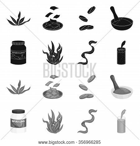 Vector Design Of Protein And Sea Symbol. Set Of Protein And Natural Stock Vector Illustration.