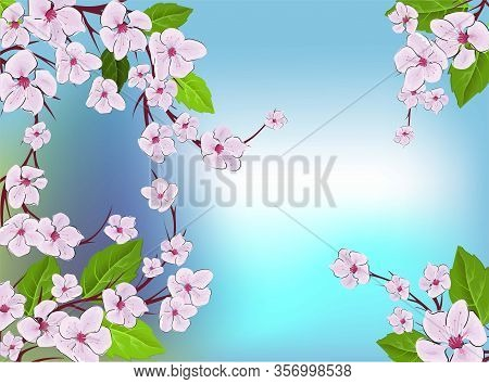 Cherry Blossom Pattern. Modern Abstract Pink Sakura Design Template On Blue Backdrop. Vintage Japane