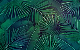 Tropical Leaves. Layout Of Jungle Exotic Banana Leaf And Areca Palm. Wallpaper Screen Summer Tropica