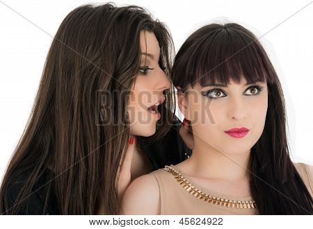 Two Young Girlfriends Sharing Their Secrets, Studio Shot