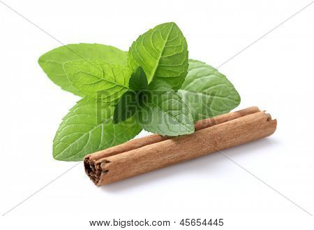 Mint with cannelle