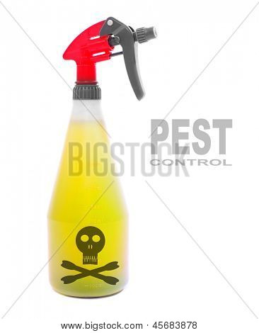 Plastic sprayer with insecticide. Picture with space for your text.