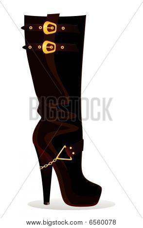 beautiful female boots
