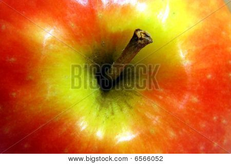 core of a juicy apple