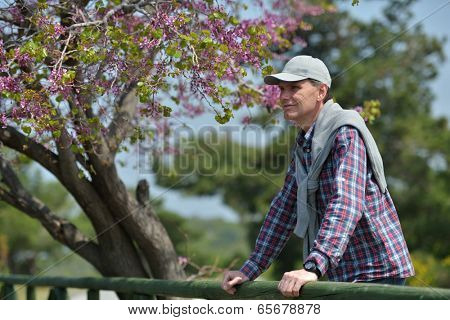 Happy mature man under the blooming Judas tree in the Dilek national park, Turkey