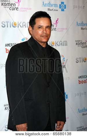 LOS ANGELES - OCT 13:  Raymond Cruz arrives at the Susan G. Komen 'Designs for the Cure' Gala at Millennium Biltmore Hotel on October 13, 2012 in Los Angeles, CA