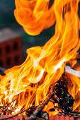 Closeup of blazing campfire coals (shallow dof) poster