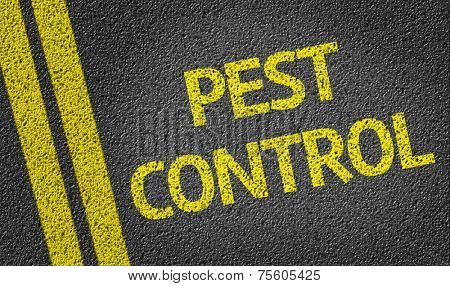Pest Control written on the road