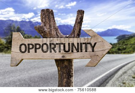 Opportunity wooden sign with a street on background