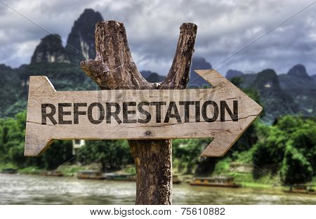 Reforestation wooden sign with a forest background