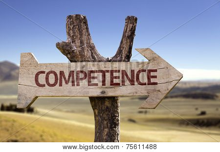 Competence wooden sign with a desert background