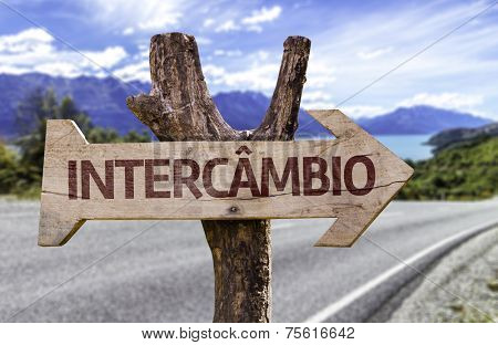 Exchange Program (In Portuguese) wooden sign with landscape background