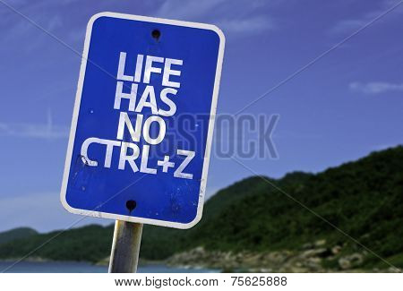 Life Has No CTRL+Z sign with a beach on background