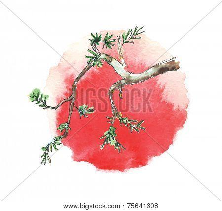 Branch of juniper tree against the sun, watercolor vector illustration
