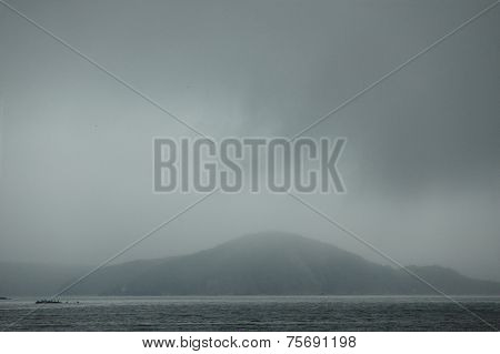 island with sea bears, Japanese sea, Vladivostok