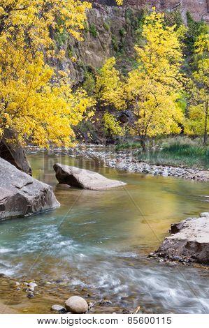 Autumn On The Virgin River