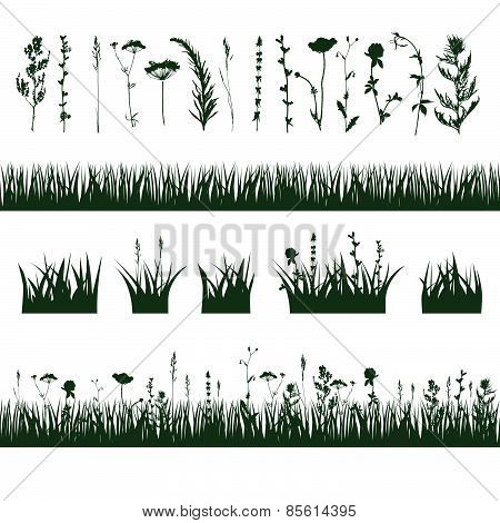 silhouettes meadow grass