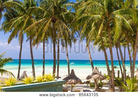 tropical beach with palm trees and beach beds, summer vacations