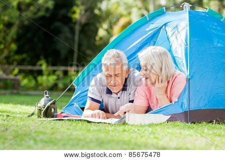 Active senior couple discussing over map at campsite in park