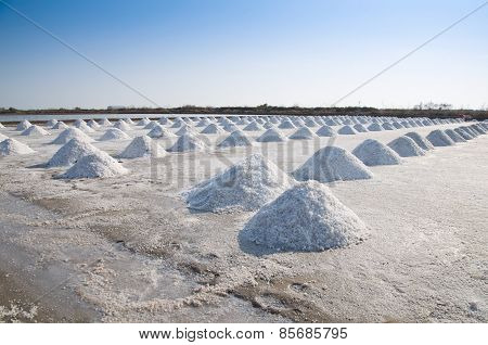 Naklua Mass Of Salt In Salt Seaside Farm, .samutsungkhram Thailand
