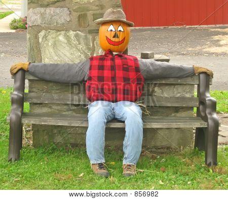 Pumpkin Head Scarecrow on a Bench