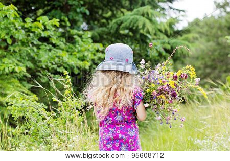 Little Girl Collects Wild Flowers