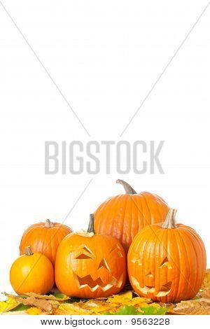 Carved Halloween Jack O Lanterns