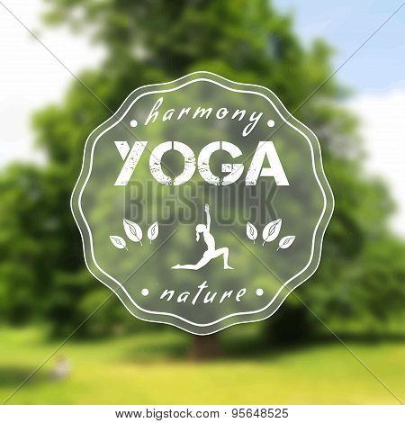 Name of yoga studio on a tree background.