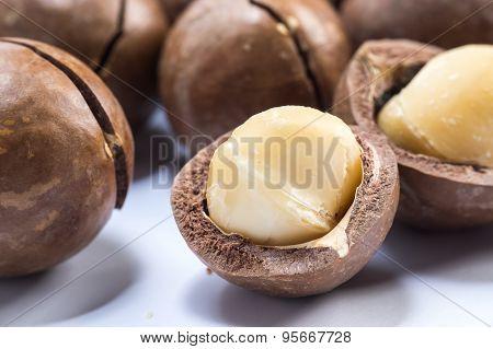 Macadamia Nuts On White Background