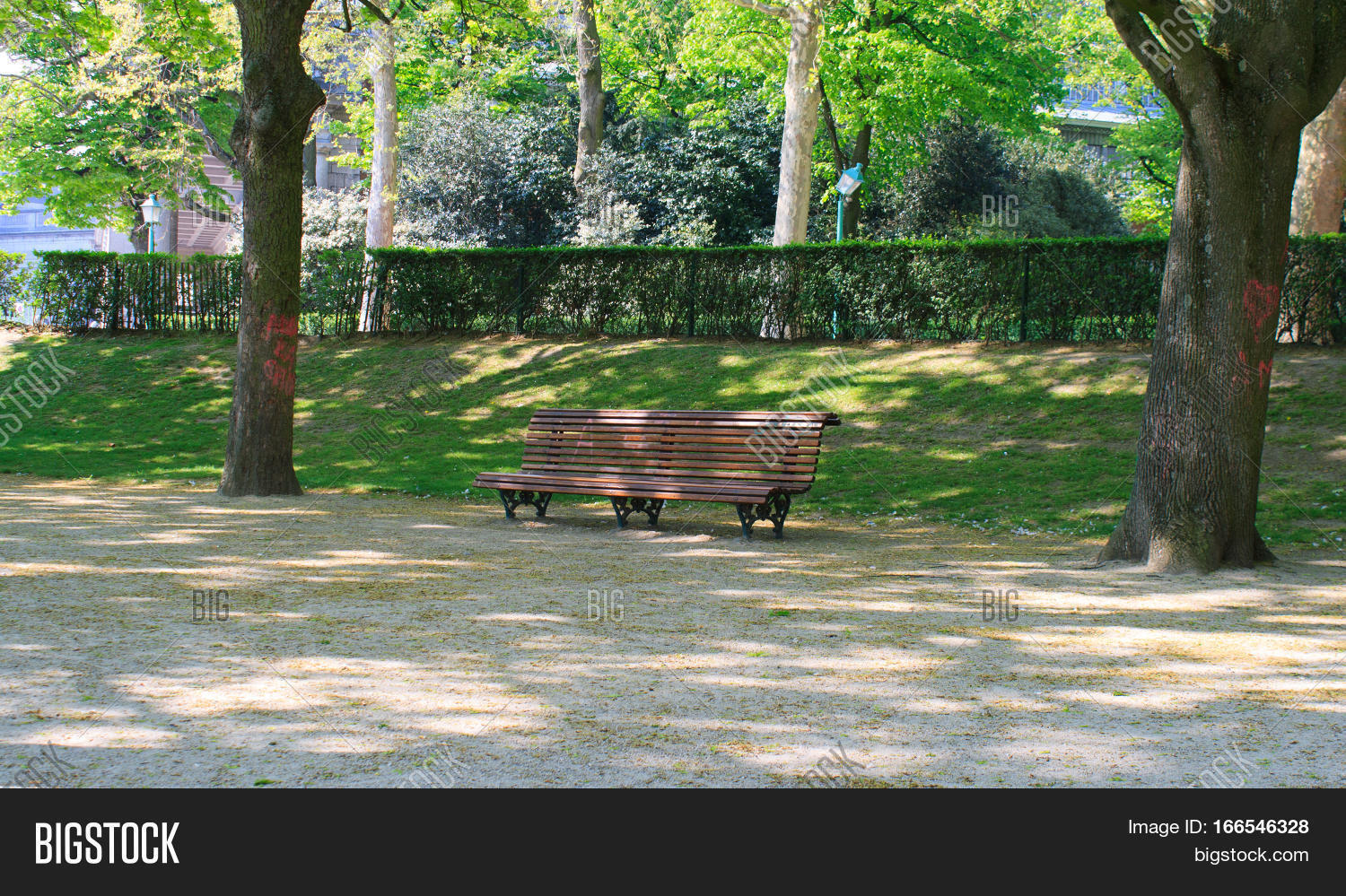 Lonely Bench Park Image Photo Free Trial Bigstock