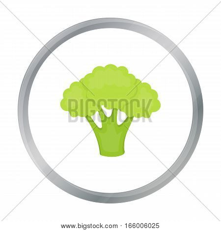 Broccoli icon cartoon. Singe vegetables icon from the eco food cartoon.