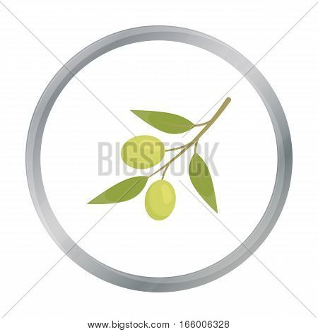 Olive icon cartoon. Singe vegetables icon from the eco food cartoon.