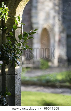 View Through Stone Archway Into Beautiful Medieval Landscape Garden With Shallow Depth Of Field For