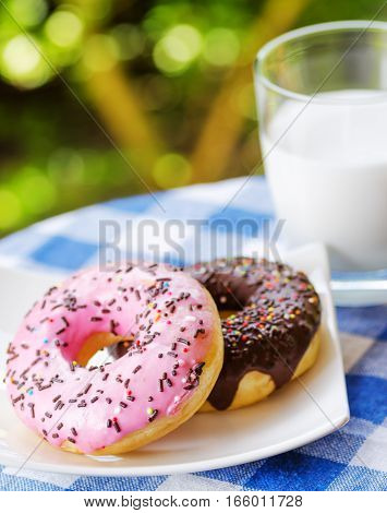 Fresh Donuts And Glass Of Milk On Nature Background