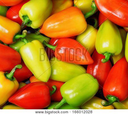 Fresh Ripe Sweet Peppers. Vegetable Background