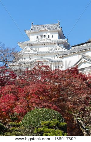 Himeji Castle with red leaves front view with blue sky background Japan