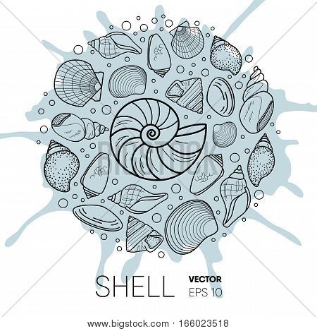 Vector sea shell composition. flat style set of conchs and shellfish for prints, advertisement, poster, banner phone case .water splash background