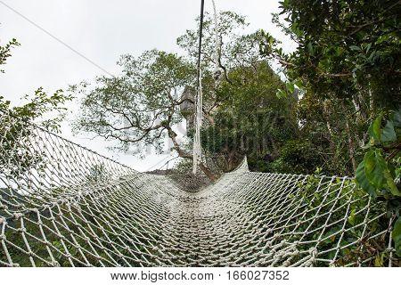 giant hammock in Masungi Reservoir, Rizal, Philippines