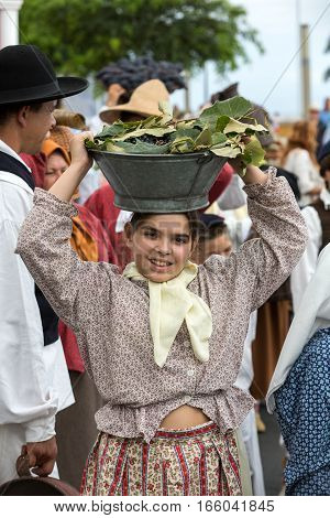 FUNCHAL MADEIRA PORTUGAL - SEPTEMBER 4 2016: Woman carry the baskets of grapes in traditional costume durnig historical and ethnographic parade of Madeira Wine Festival in Funchal. Madeira Portugall