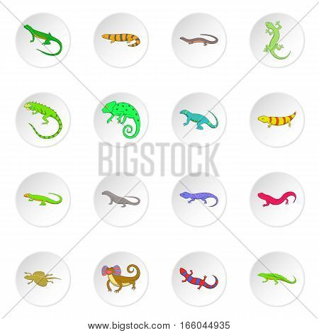 Lizard icons set. Cartoon illustration of 16 lizard vector icons for web